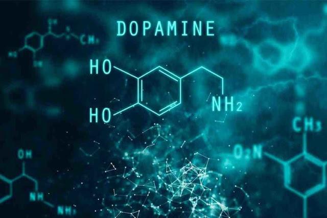 Mengenal Fungsi Dopamin Pada Otak Anda