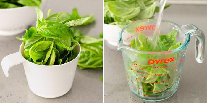 basil leaves to make pesto