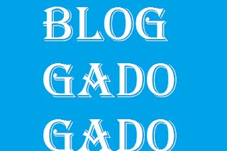 Manfaat Menjadi Blog Gado Gado