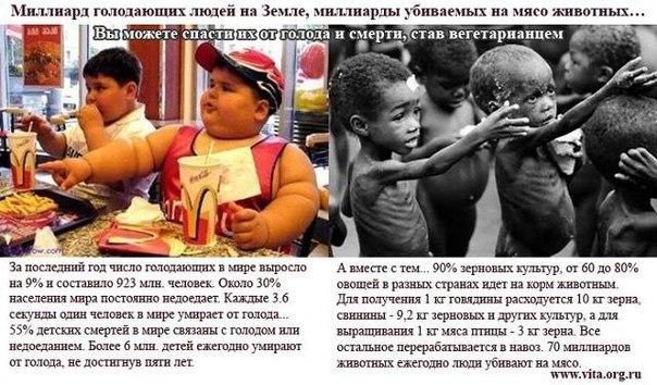 все понимают, мы жили бедно постоянно недоедали переводы русского