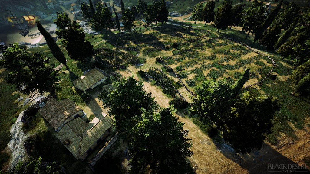 With your own farm you can earn a lot of money in Black Desert.