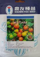 tomat mutiara, manfaat tomat, cara menanam tomat, jual benih tomat hibrida, toko pertanian, toko online, lmga agro