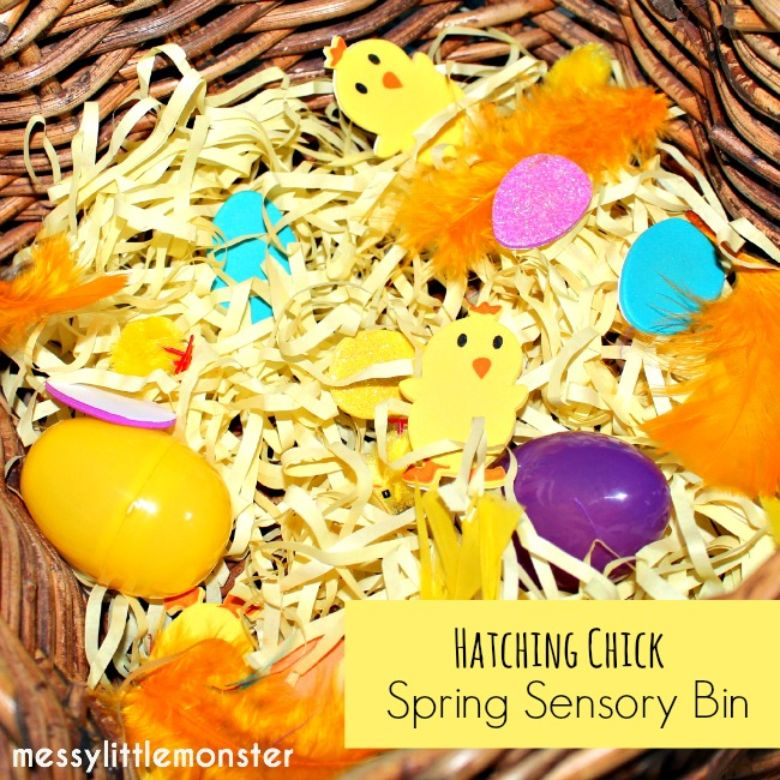 hatching chick sensory bin spring activity for kids