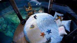 Hotel bawah laut, tidur dengan hiu