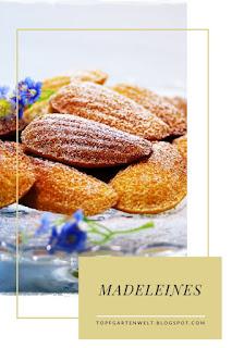 {Buchvorstellung mit Rezept} Köstliche französische Madeleines #madeleines #französischbacken #backen #rezept #kaffeegebäck - Foodblog Topfgartenwelt