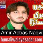 https://humaliwalaazadar.blogspot.com/2019/09/syed-amir-abbas-naqvi-nohay-2020.html