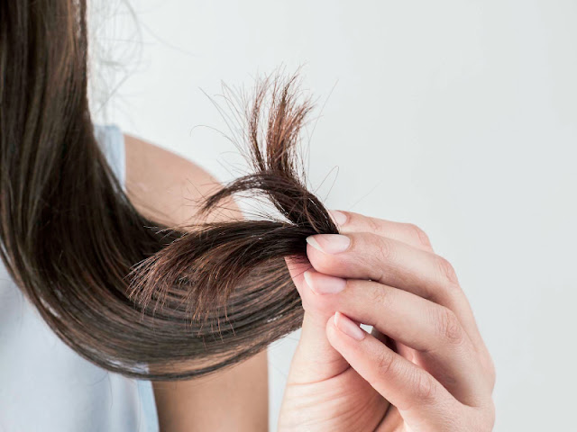rambut-bercabang-rusak-parah