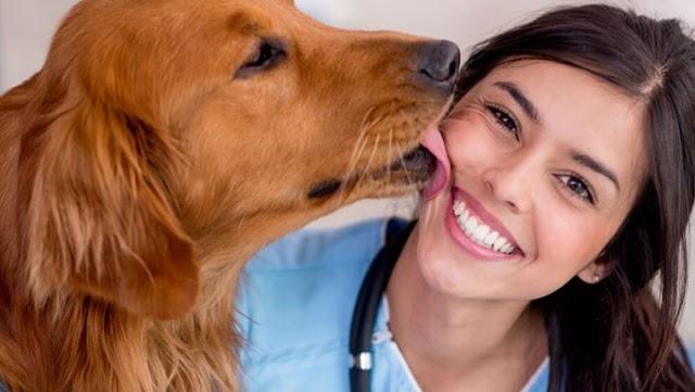 Μπορούμε ή όχι να φιλάμε το σκύλο μας;