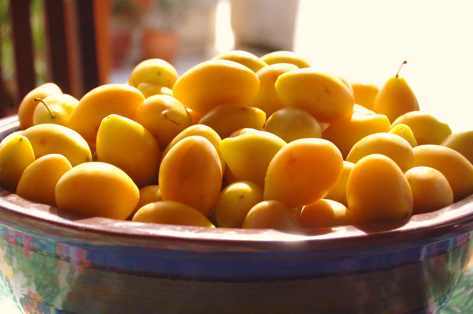wasabi Marmellata di piccole prugne gialle