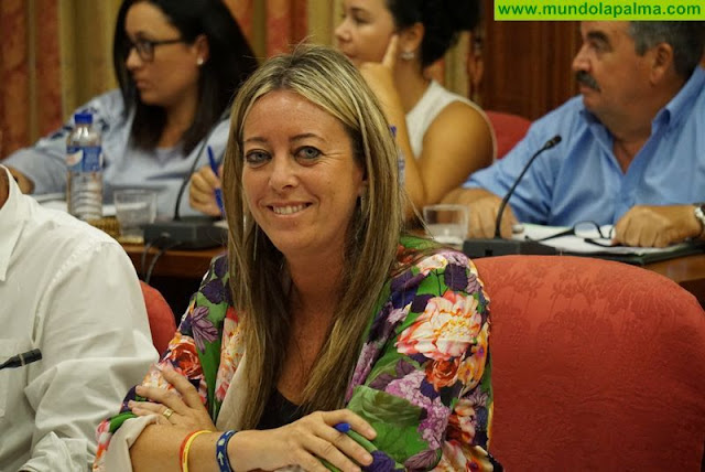 El PP le pide firmeza al Cabildo ante la pasividad del Gobierno de Canaria en materia de Carreteras