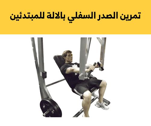 تمارين الصدر للمبتدئين