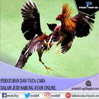 Peraturan Judi Sabung Ayam Online dan juga Tata cara dalam judi sabung ayam online - Pusat Judi.