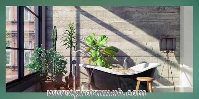 cara menata dekorasi kamar mandi - menambahkan berbagai tanaman hias