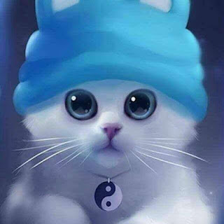cute-looking-kitty-dp