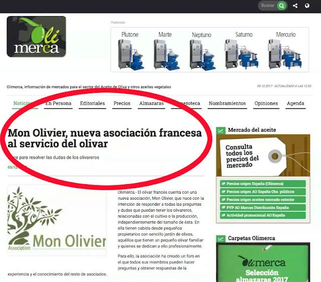 #monolivier #olimarca #huiledolive #olivier #presse #naissance