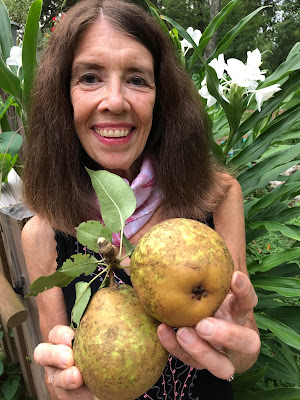 Nancy holding Asian Pears