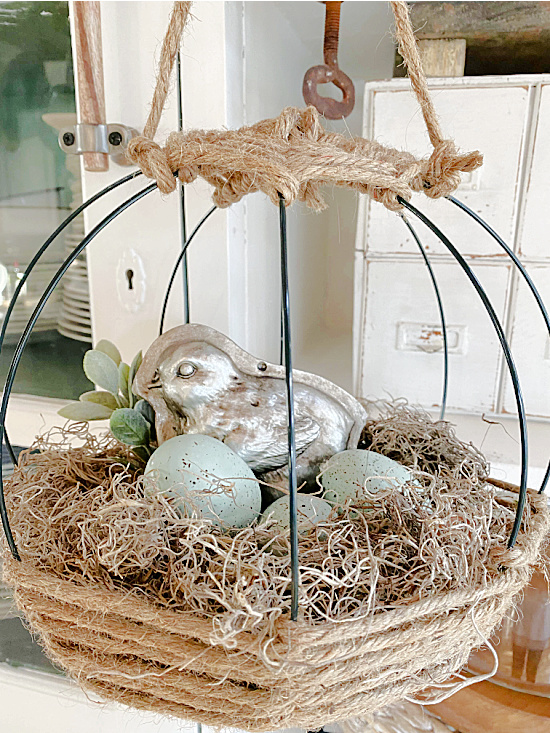 eggs and bird in hanging nest