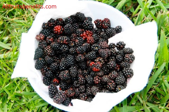 Benefits of dewberry