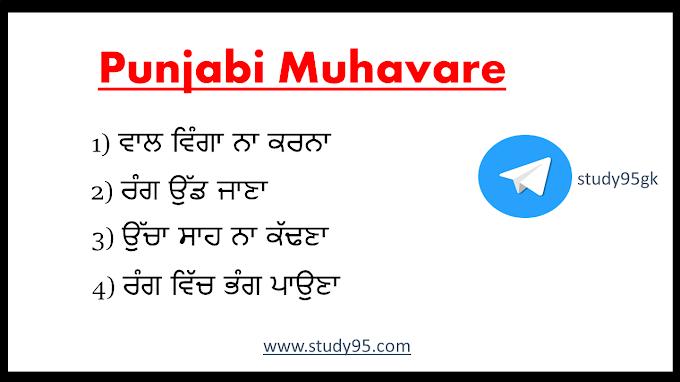 20 Muhavare in Punjabi Language - Study95