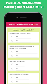 Precise calculation with Marburg Heart Score (MHS)