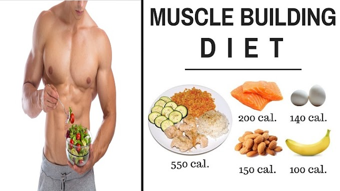 Meal Plan - Best Foods For your Muscle Building