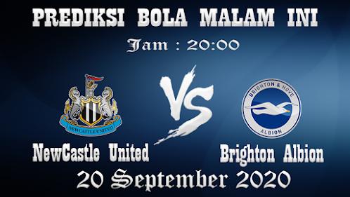 Prediksi Bola Newcastle United Vs Brighton Hove Albion