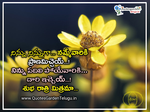 Good night inspiring words quotes and whatsapp status messages in telugu language free download pdf