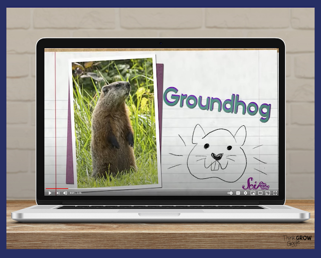 Groundhog day video for kids