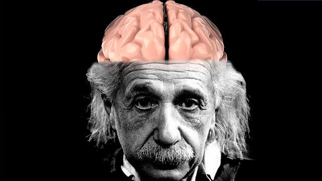 كيف تحصُل على دماغ أينشتاين حتى لو لم تولد عبقرياً