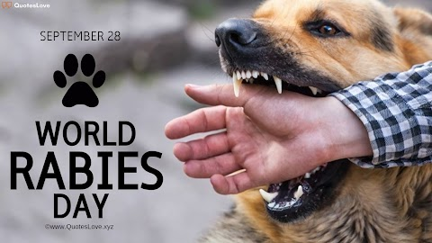 27+ [Best] World Rabies Day 2021: Quotes, Sayings, Slogans, Wishes, Greetings, Theme, Poster, Pictures, Images, Photos