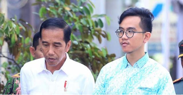 Gibran Putra Jokowi Masuk Unsur 10 Profesional Milenial Calon Menteri