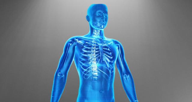 Hidden Fact About Human Body