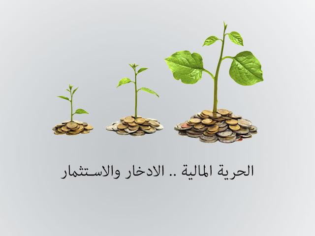 الحرية المالية .. كيفية الادخار والاستثمار