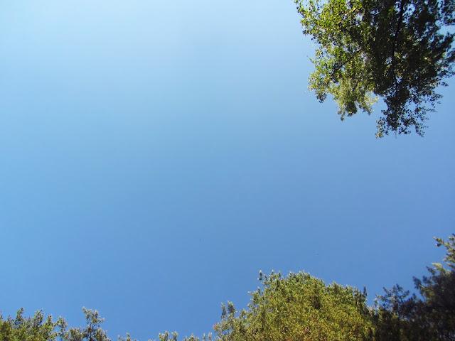 Pilvetön taivas