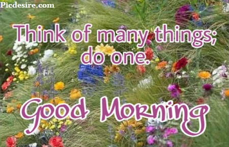 50 Beautiful Good Morning Quotes and Saying
