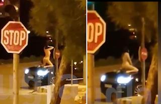Βάρκιζα: Tα πέταξε όλα και έκανε «show» πάνω στο καπό ενός αυτοκινήτου (Βίντεο)