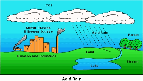 a look at the causes formation and effects of acid rain Then we could look at the ozone-acid rain  we've seen the effects of acid rain in more  exactly what kind of problem is the 'acid rain problem.