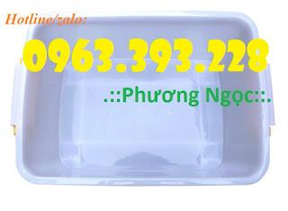 Thùng nhựa có nắp DA30, thùng nhựa bánh xe, hộp nhựa có nắp Day_trong_1
