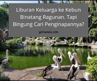 liburan keluarga ke kebun binatang ragunan. tapi bingung cari penginapannya?