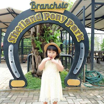 Spot Foto Branchsto BSD
