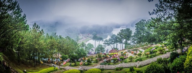 Where to go to see the full early winter - the most beautiful season of Dalat?