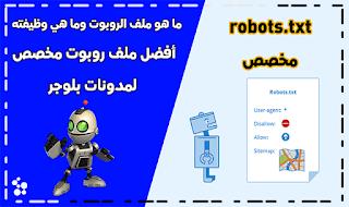 ملف روبوت مخصص robots.txt جاهز لمدونات بلوجر