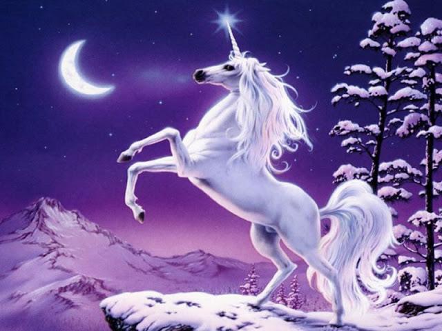 Tak Ada Unicorn, Sapicorn Pun Jadi