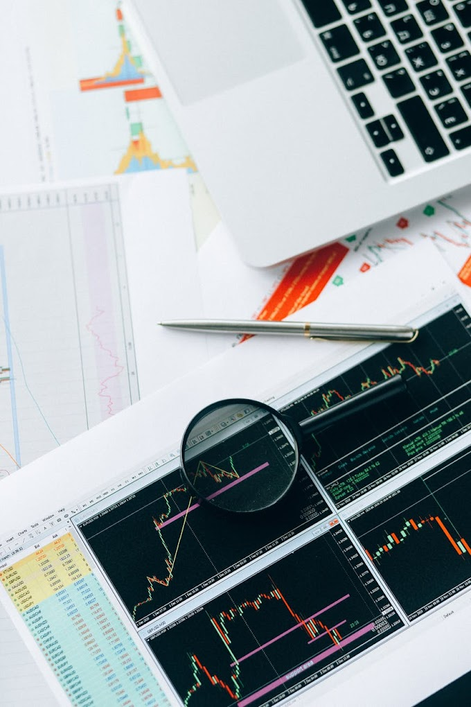 3 Beginner's Actions to End up being a Forex Investor