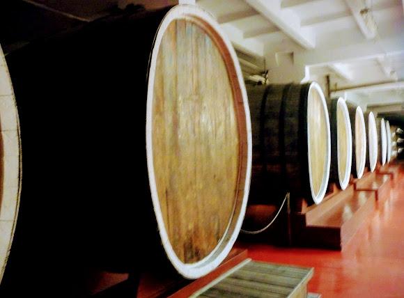 Шабо. Центр культуры вина. Подвал для хранения и выдержки вин