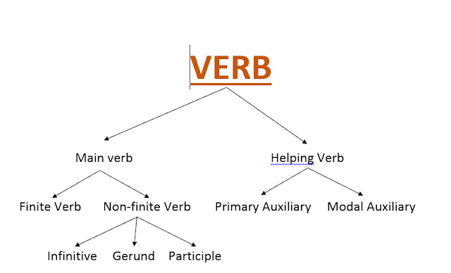 Important Notes : Verb