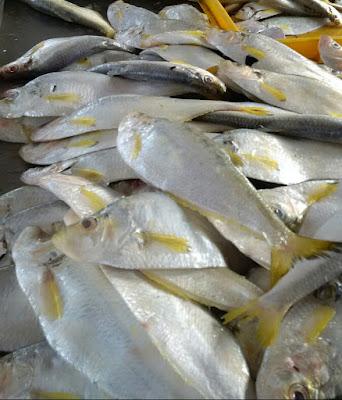 Lunch Ikan Puput Goreng Kunyit Dengan Sayur Peria