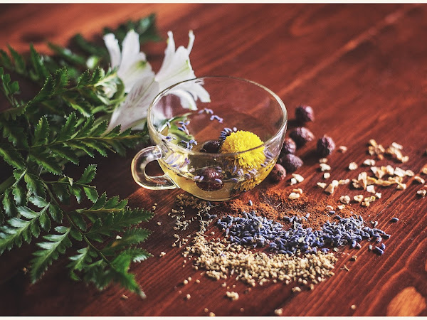 Herbs and Oils : What You Need to Know