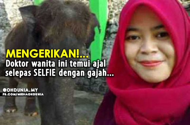 MENGERIKAN!.. Doktor Wanita Ini Maut, Selepas Selfie Dengan Gajah