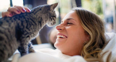 La alegría de tener un gato
